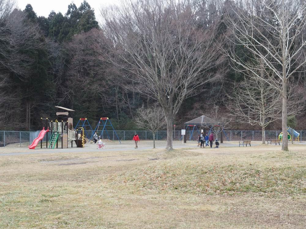 加瀬沼公園の遊具の風景1
