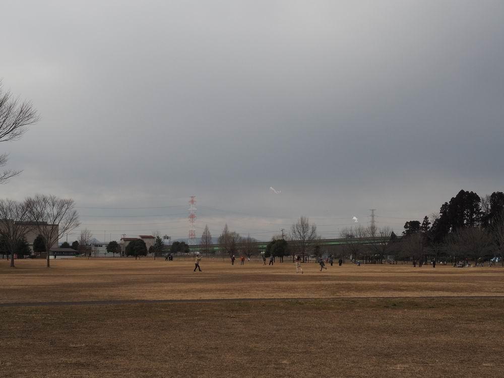 加瀬沼公園の凧揚げ風景