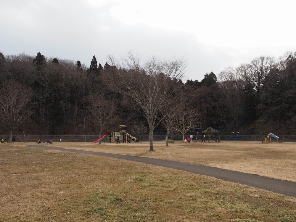 加瀬沼公園の遊具の風景