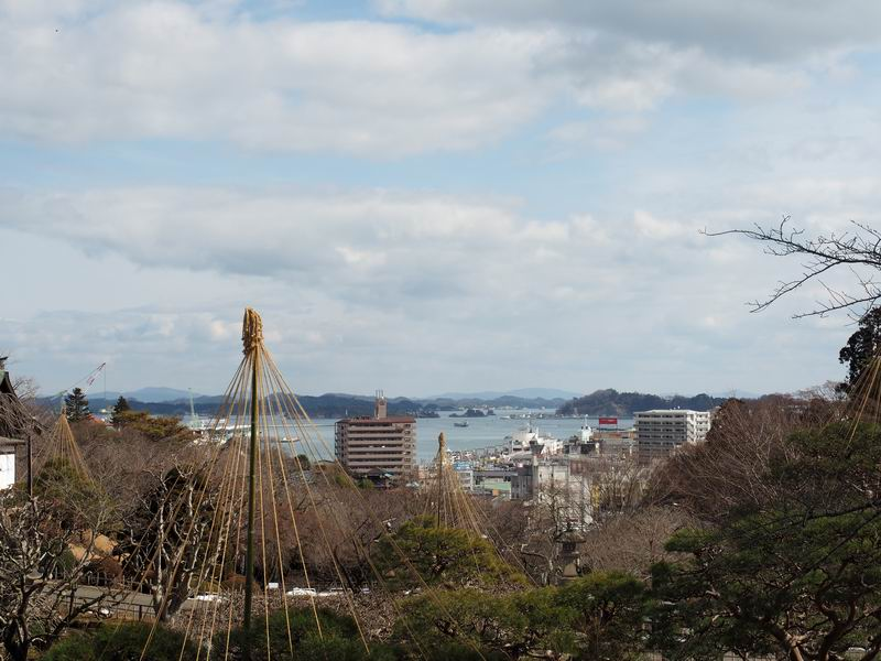 塩釜神社から港を見下ろす風景