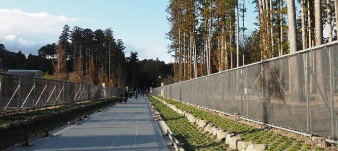 瑞巌寺の参道の全景写真
