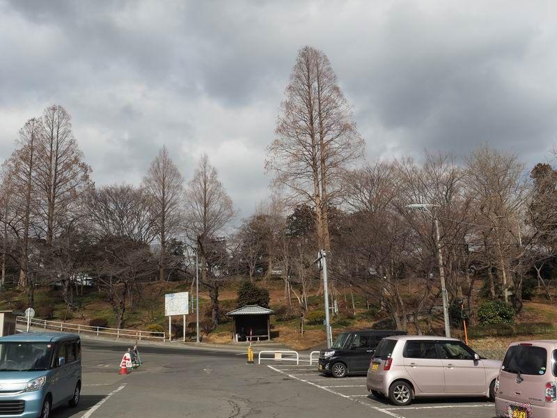 第一駐車場の風景