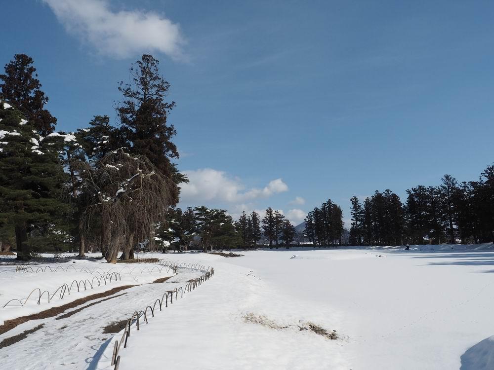 毛越寺冬の風景大泉ヶ池の風景5