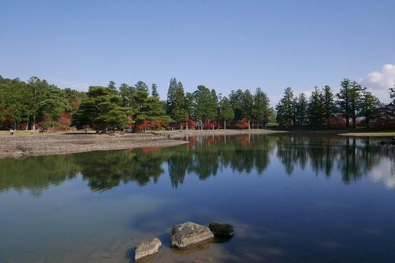 毛越寺の紅葉の風景写真