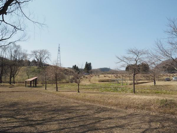 ミズバショウ公園の全景