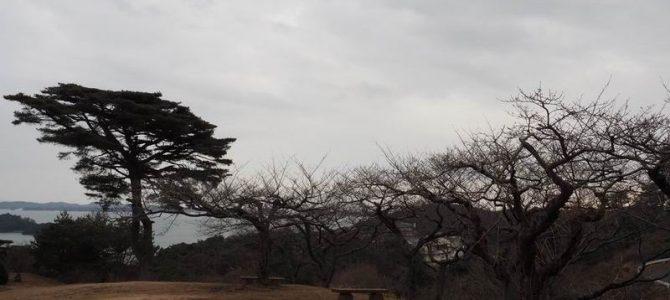 西行戻しの松公園の冬の風景写真