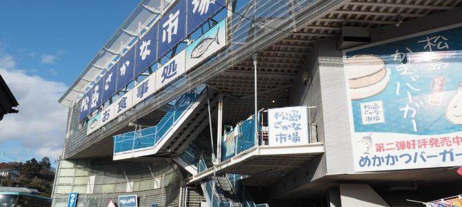 松島さかな市場の全景写真