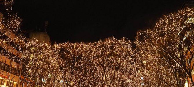 仙台光のページェントの写真画像