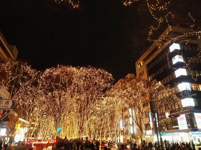 仙台光のページェントの定禅寺通りの写真