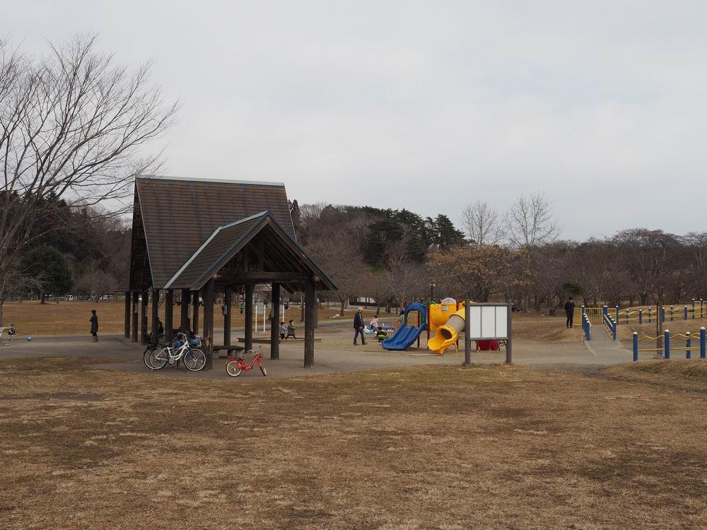 加瀬沼公園の遊具の風景2