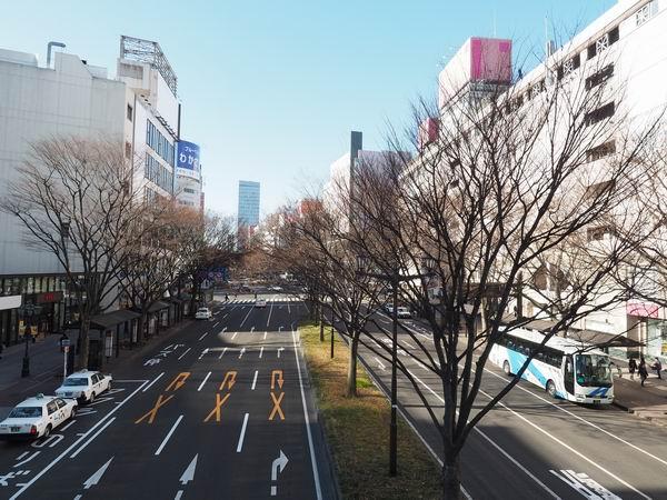 仙台駅西口の一般車両乗り入れ口の陸橋の反対側の風景
