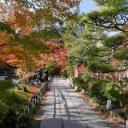 円通院の紅葉の風景