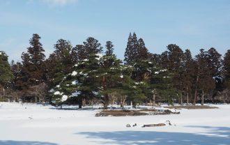 毛越寺冬の風景大泉ヶ池の風景4