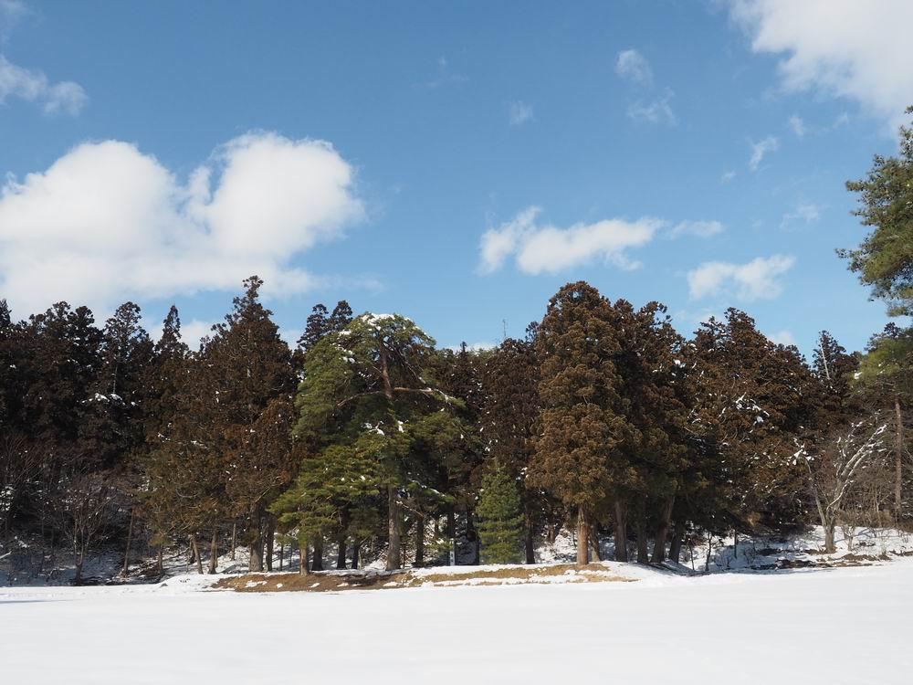 毛越寺冬の風景大泉ヶ池の風景6