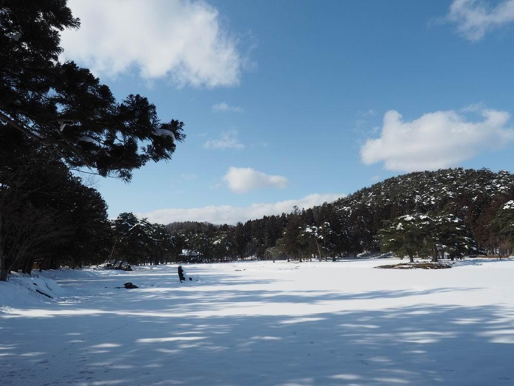 毛越寺大泉ヶ池の冬の風景