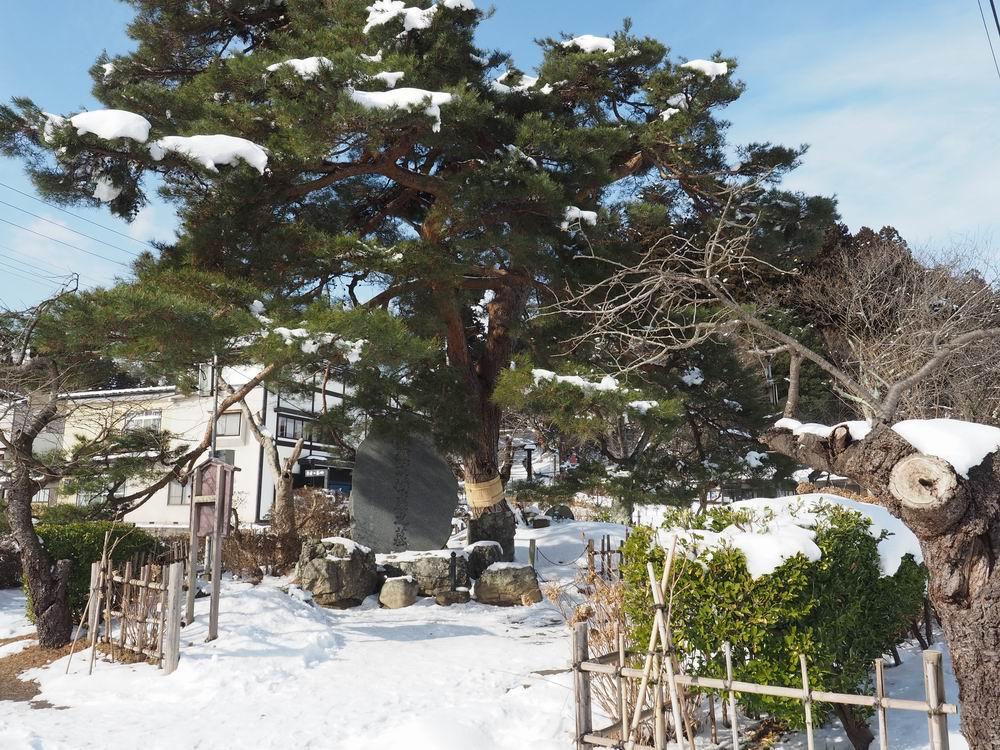 中尊寺弁慶の墓全景
