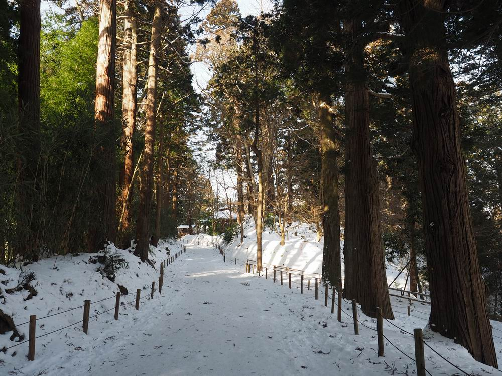 中尊寺の月見坂冬の風景2