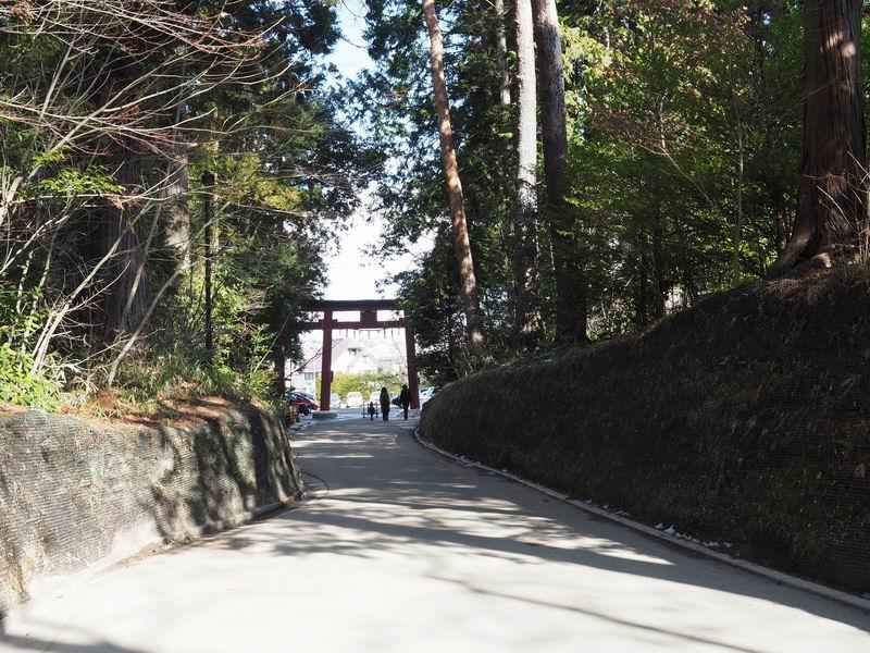 大崎八幡宮の駐車場側の参道を途中から反対方向を眺めてみる