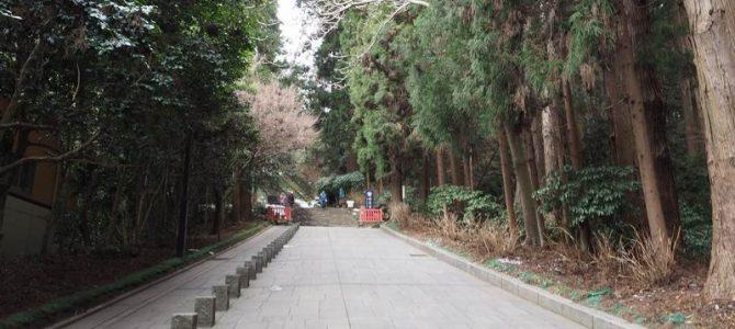 瑞宝殿の参道の登坂の風景