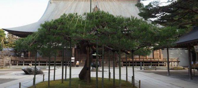 中尊寺の秋の風景写真