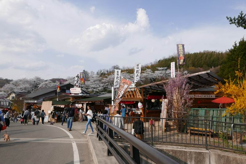 花見山公園の出店の風景写真