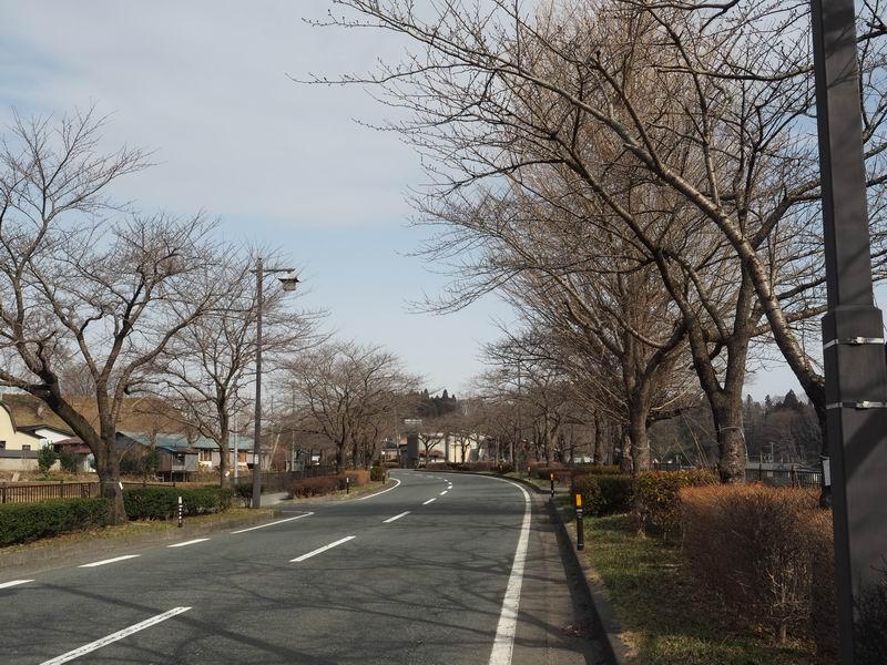 県道300号線沿いの桜の咲く前の風景