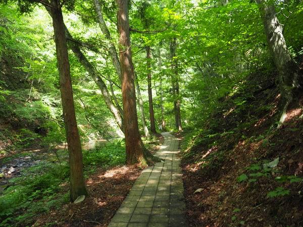 釜淵の滝の湯歩道の風景写真