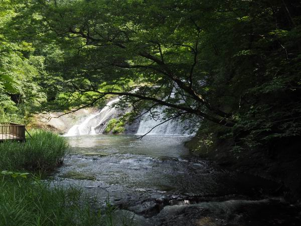 釜淵の滝の夏の風景写真