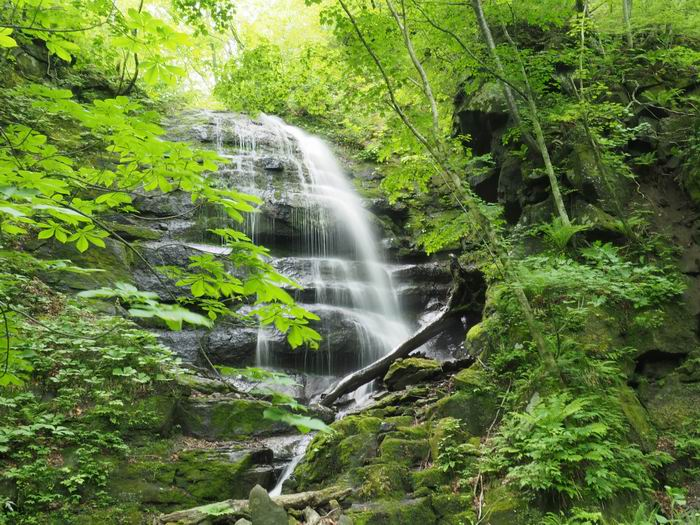 奥入瀬渓流の川の渓流の滝の風景写真