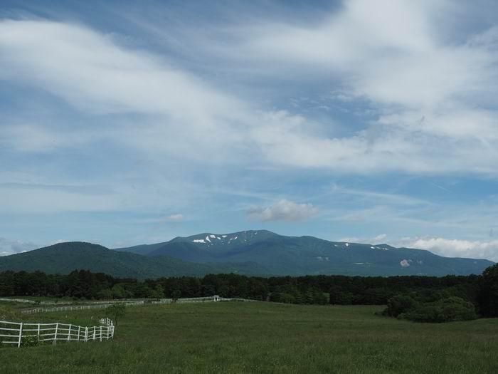 栗駒山の7月の夏の風景