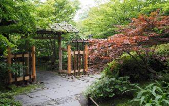 日本三景松島の円通院の初夏の風景写真