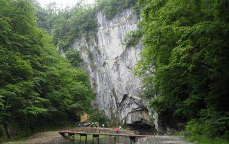 猊鼻渓の初夏の風景写真