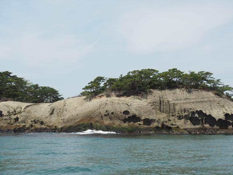 嵯峨渓遊覧船の風景写真陸の桜の風景