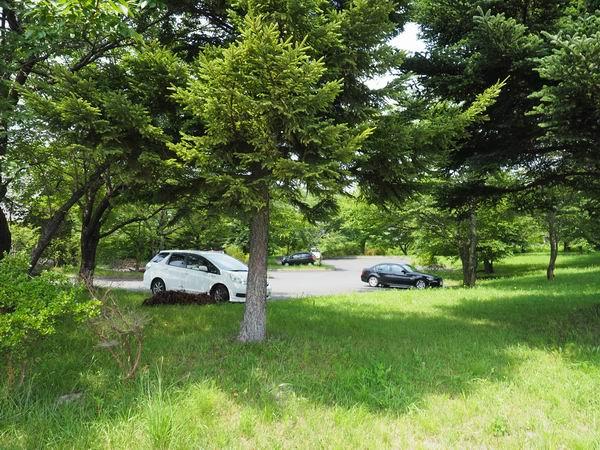 イギリス海岸詩の森公園の駐車場風景写真
