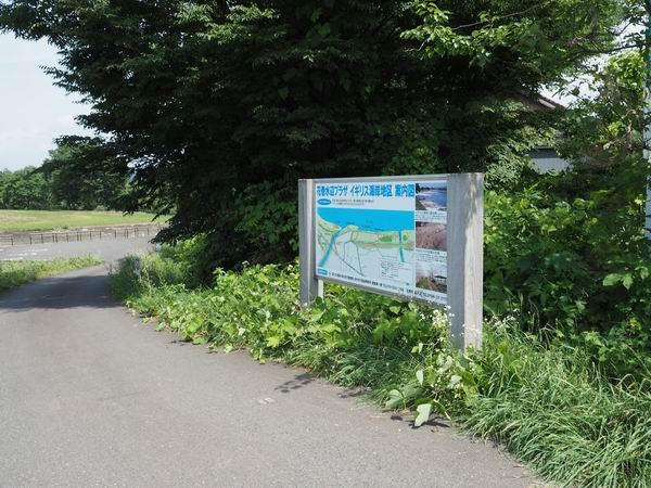 イギリス海岸を紹介する看板の写真