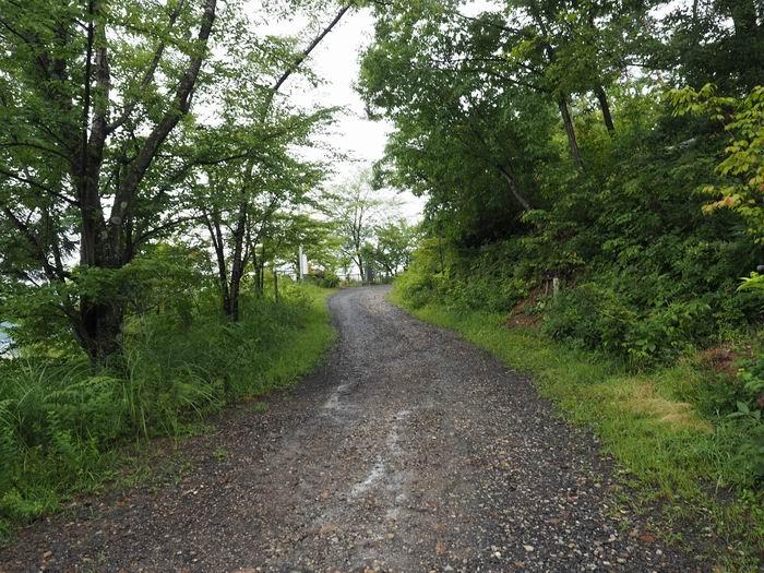 花咲山展望台遊歩道の道路の風景写真