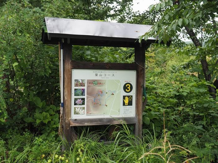 花咲山展望台遊歩道の位置を示す看板