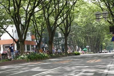仙台ジャズフェス定禅寺通りのステージ風景写真ぽとかー先導で歩行者天国開始