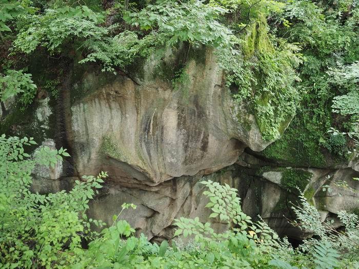 磊々峡奇面岩の風景写真