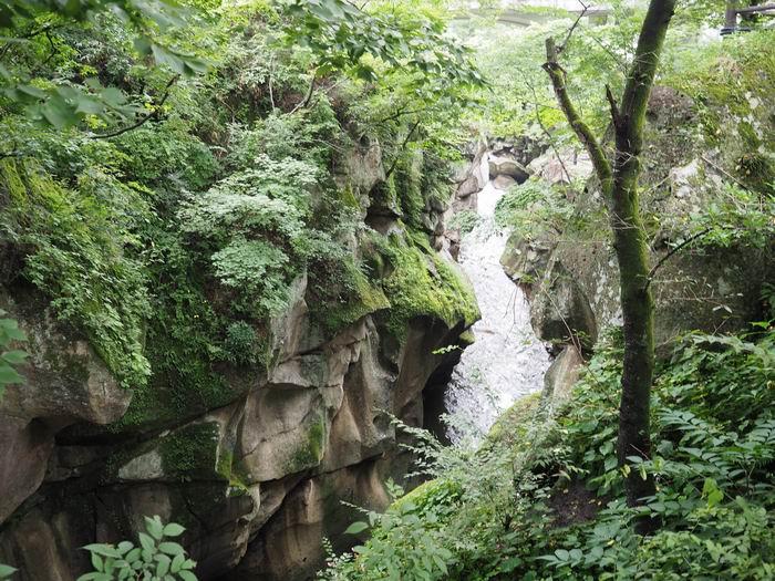 磊々峡奇面岩の近辺の風景写真