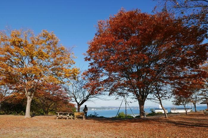 多聞山駐車場の向かいの風景