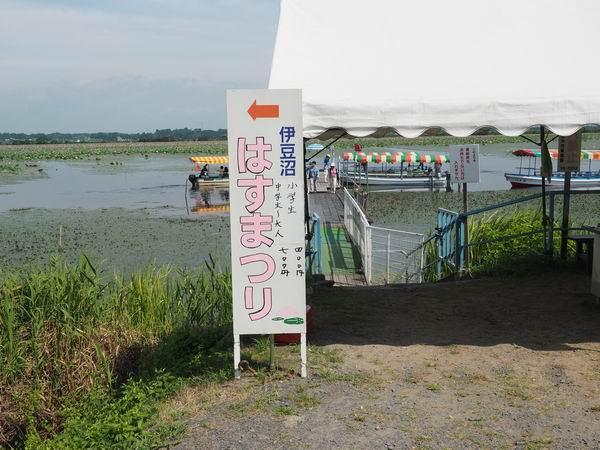 伊豆沼ハス祭り遊覧船の料金表示の看板
