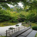 円通院の夏の庭園の風景写真