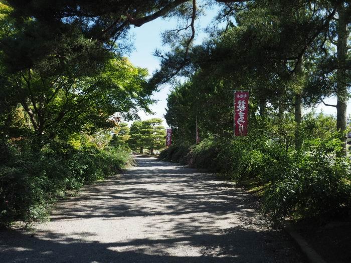 毛越寺萩まつりの幟の風景