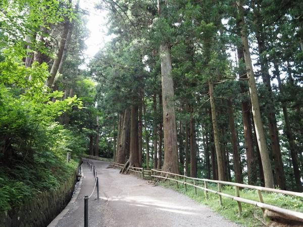 中尊寺月見坂の風景写真