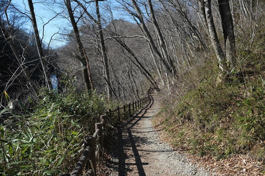 xt3で撮影する秋保大滝の冬の風景写真遊歩道の中間点付近