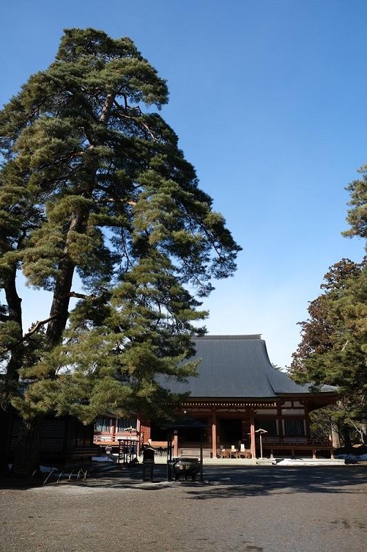xt3で撮影する毛越寺の風景写真