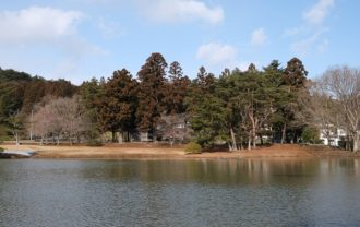 x-t3で撮る観自在王院跡の風景舞鶴ヶ池に浮かぶ中島の風景