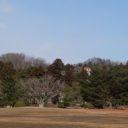 観自在王院跡をx-t3で撮影全景写真
