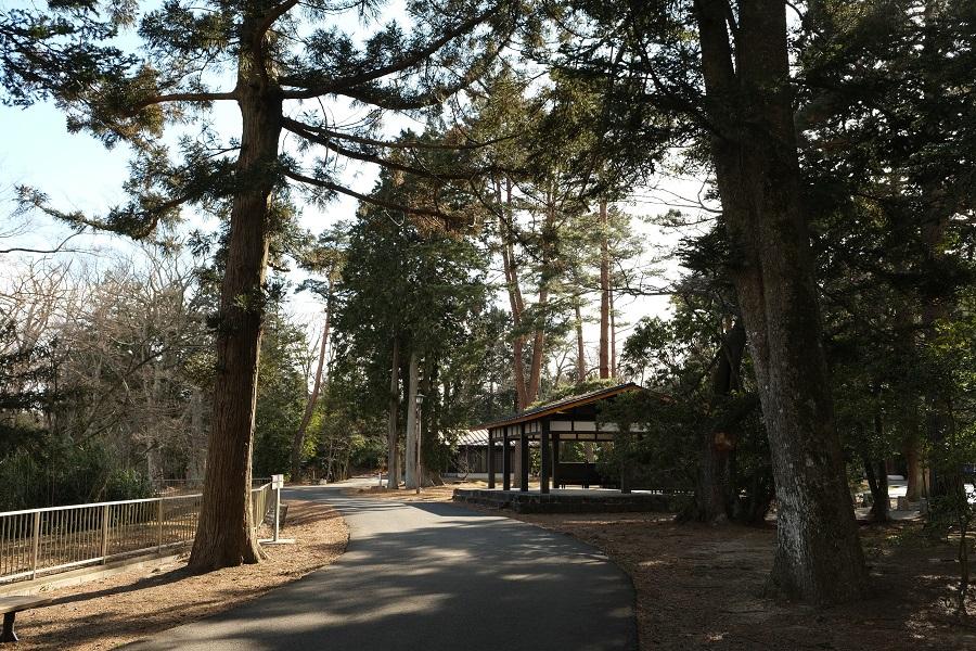 青葉城址公園(仙台城)の園内の風景写真